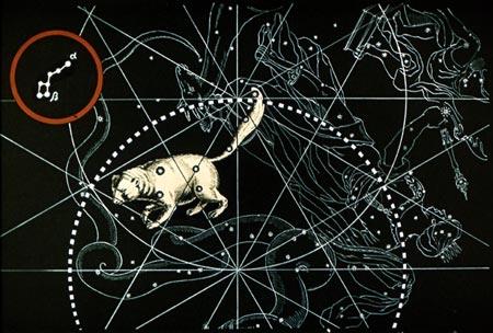 Начертание созвездия совсем не похоже ни на какую медведицу.  Иногда его называют ковшом, так это понятно.